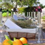 Hierbas Destilerias Ibiza Herbs