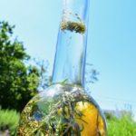 Hierbas Destilerias Ibiza Bottled Herbs